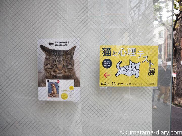 猫と心理テスト展
