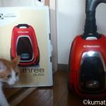 掃除機にパンチする猫