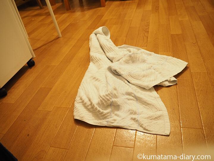 移動したバスタオル