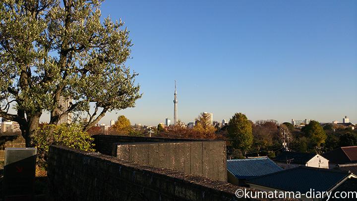 朝倉彫塑館の屋上庭園