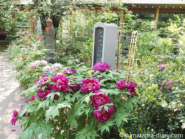 牡丹の花とお地蔵さん