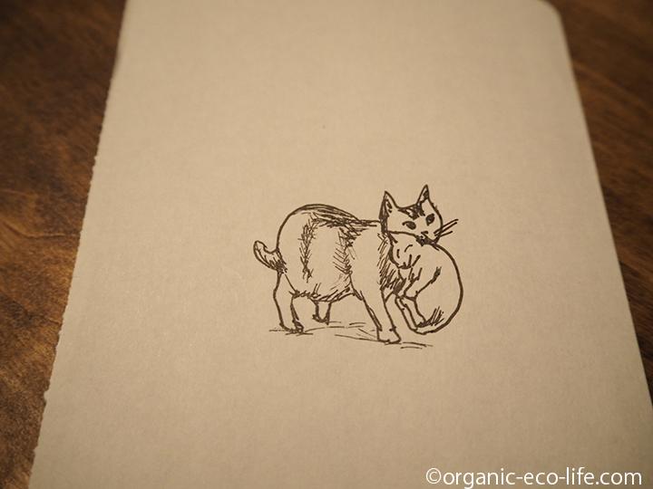 子猫をくわえて運ぶ母猫