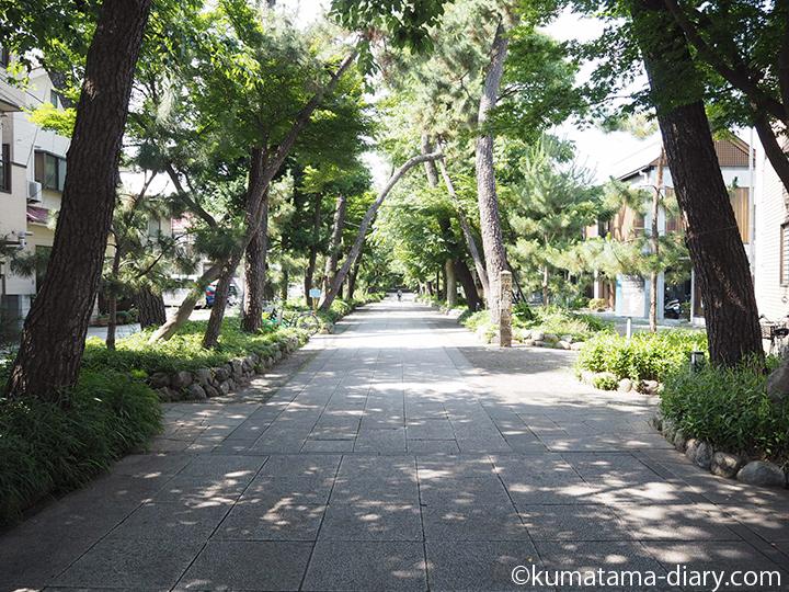 九品仏浄真寺の参道