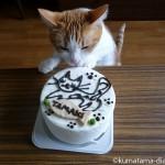 猫の誕生日は毎年必ずお祝いしています