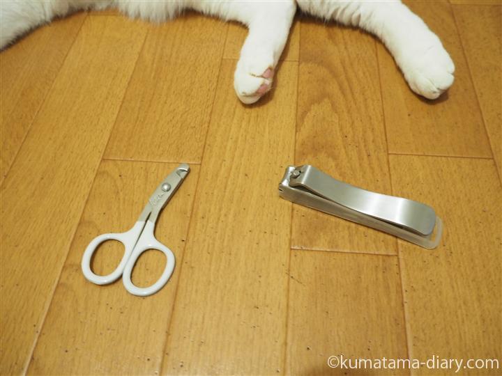 猫と爪切り