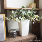 「ブルーミングスケープ」でアイビーの人工観葉植物を買いました