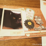猫の誕生日カードが届きました