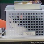 「オムロン メッシュ式ネブライザ NE-U22」で猫に吸入させる方法