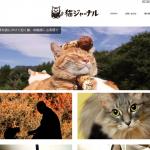 毎日見ている猫情報サイト「猫ジャーナル」