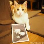 金星灯百貨店で猫写真フリーペーパー「ネコメンタリー」をGETしました