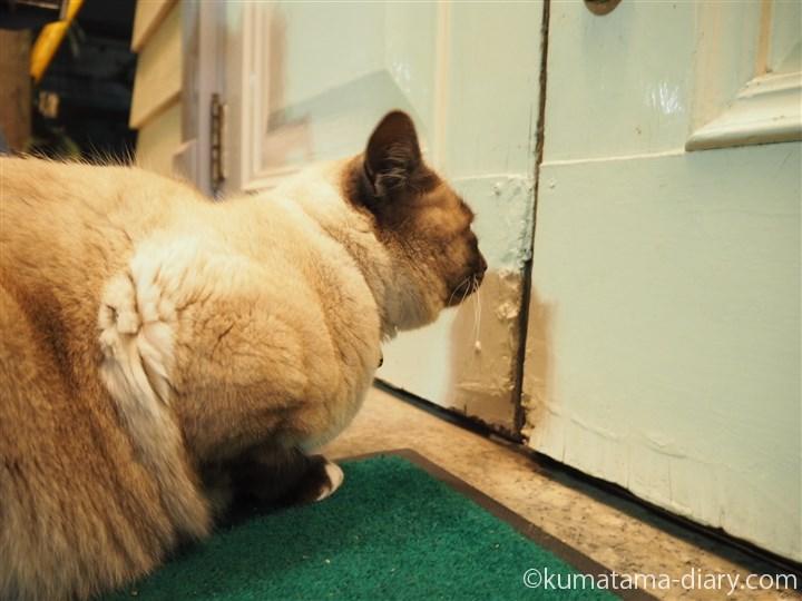 ドアの前でまつすずくん