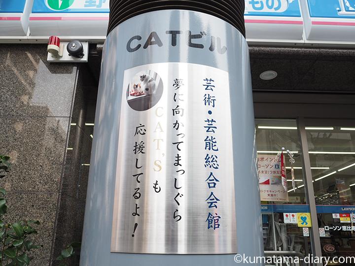CATSも応援してるよ