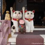 招き猫発祥の地 浅草「今戸神社」に行ってきました