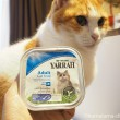ヤラー CAT キャットチャンクチキンと魚