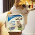 ヤラー CATチキンと魚のキャットチャンク【レビュー】