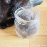 猫毛フェルトの指人形を作るために、せっせと猫の毛を集めています