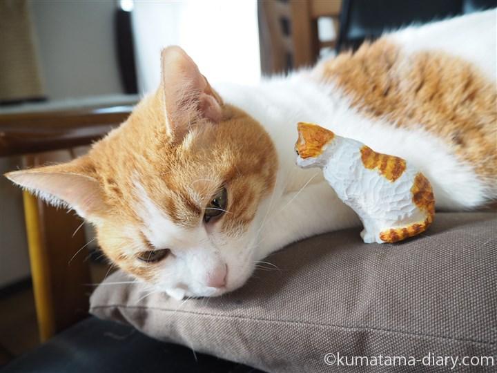 寝るたまきと木彫りの猫