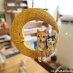 巣巣ではしもとみおさんの個展「机の上の猫と犬」を見ました