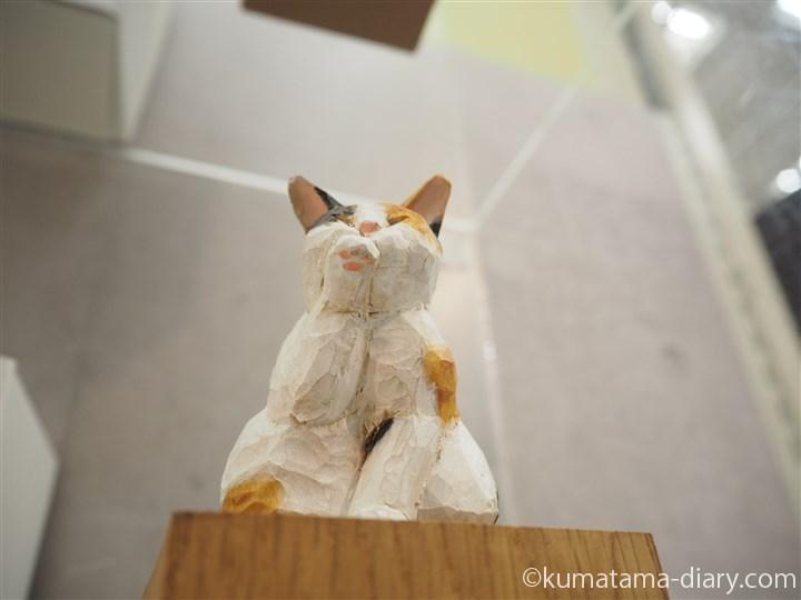 三毛猫さんの肉球