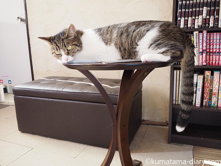 テーブルの上のハナピンク