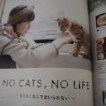 付録も豪華!猫づくしの「リンネル」11月号に手作りフードの作り方が掲載されました