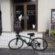 クロスバイクで猫カフェへ