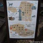 「港のネーコ・ネコはま・ネコすき2」を見に行きました