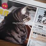 「月刊猫とも新聞」の購読を始めました