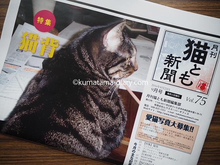 猫とも新聞猫背特集