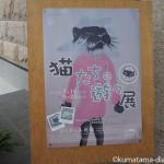 加須市のほくさい美術館で「猫たちの遊々展2016」を観てきました