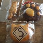 「ねこまつり at 湯島」で買った糖質オフスコーンを盗み食いした猫
