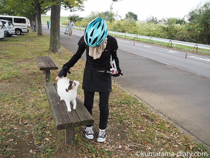 見つめ合う私と猫さん