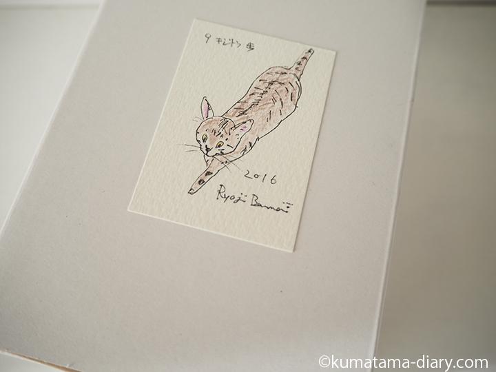 木彫り猫の箱のイラスト