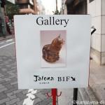 バンナイリョウジさんの個展「小さな木彫りのねこ2」を見に行きました