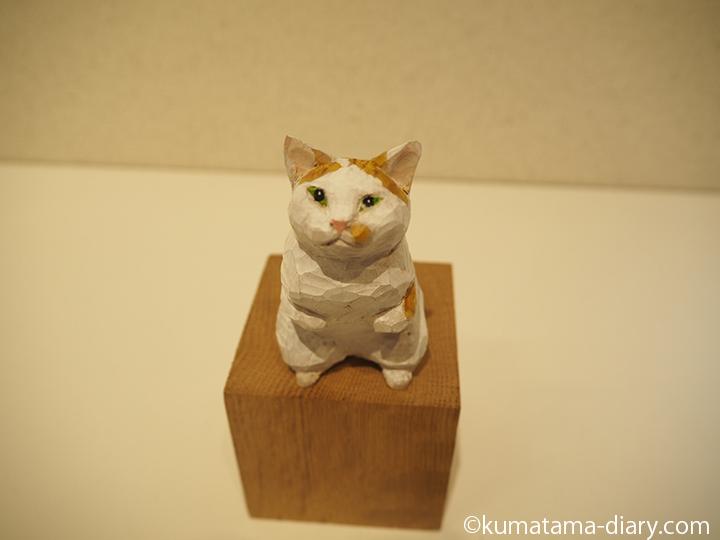 立ち上がる茶トラ白猫