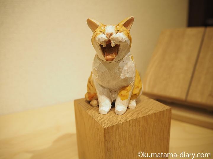 あくびする茶トラ白猫さん
