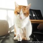 豪徳寺で「招き猫」を買いました