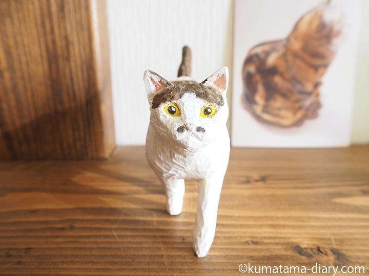 歩くキジトラ白猫正面