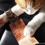 写真展「岩合光昭の世界ネコ歩き」を西武池袋本店で見ました