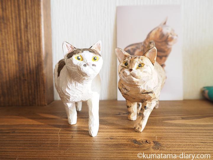 歩くキジトラ白猫とバンナイさんの猫