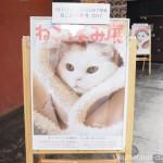 人気の猫クリエイターが集結した可愛い猫の写真&物販展「ねこ休み展 冬 2017」を見に行きました
