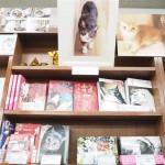猫好きさんにオススメ♪人気の本から定番までラインナップが素晴らしい「猫本専門神保町にゃんこ堂」
