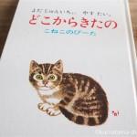 猫の絵がかわいい絵本「どこからきたの こねこのぴーた」を読みました