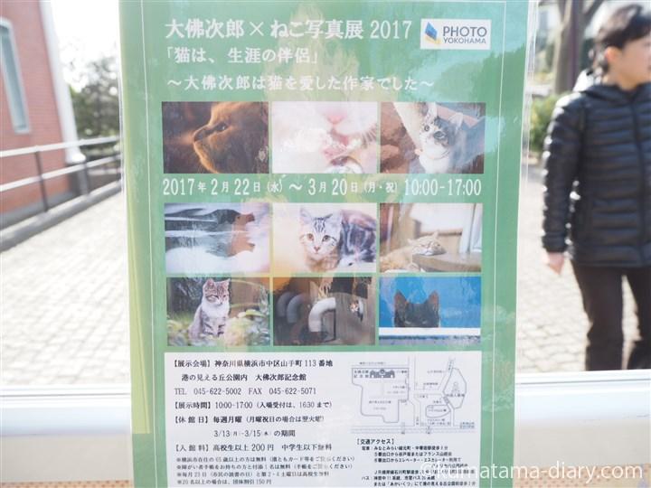 大佛次郎×ねこ写真展2017