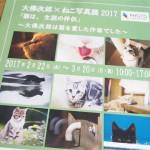 【横浜】大佛次郎記念館の「大佛次郎×ねこ写真展2017」を見に行きました