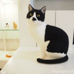 ビリケンギャラリーで「猫ラボ個展ー猫のいるところー」を見ました