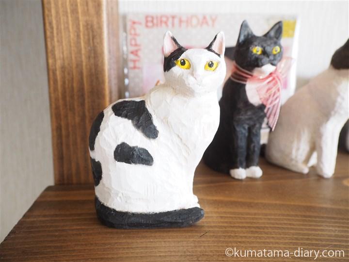 大きめ白黒猫