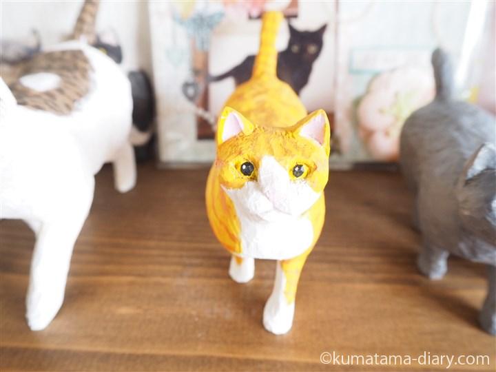 歩く茶トラ白猫さん