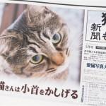 『月刊猫とも新聞』2017年5月号の特集は「猫さんは小首をかしげる」です