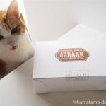 中目黒「ヨハン」のチーズケーキと猫